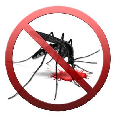 Miasto wydaje wojnę komarom