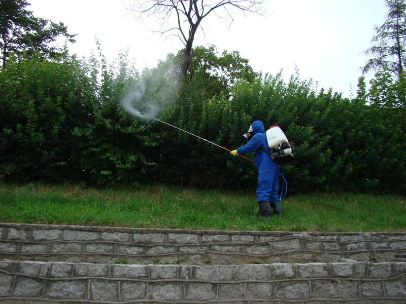Walczą z komarami i kleszczami