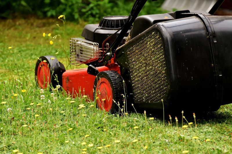 Kosiarka do trawy - jak o nią dbać?